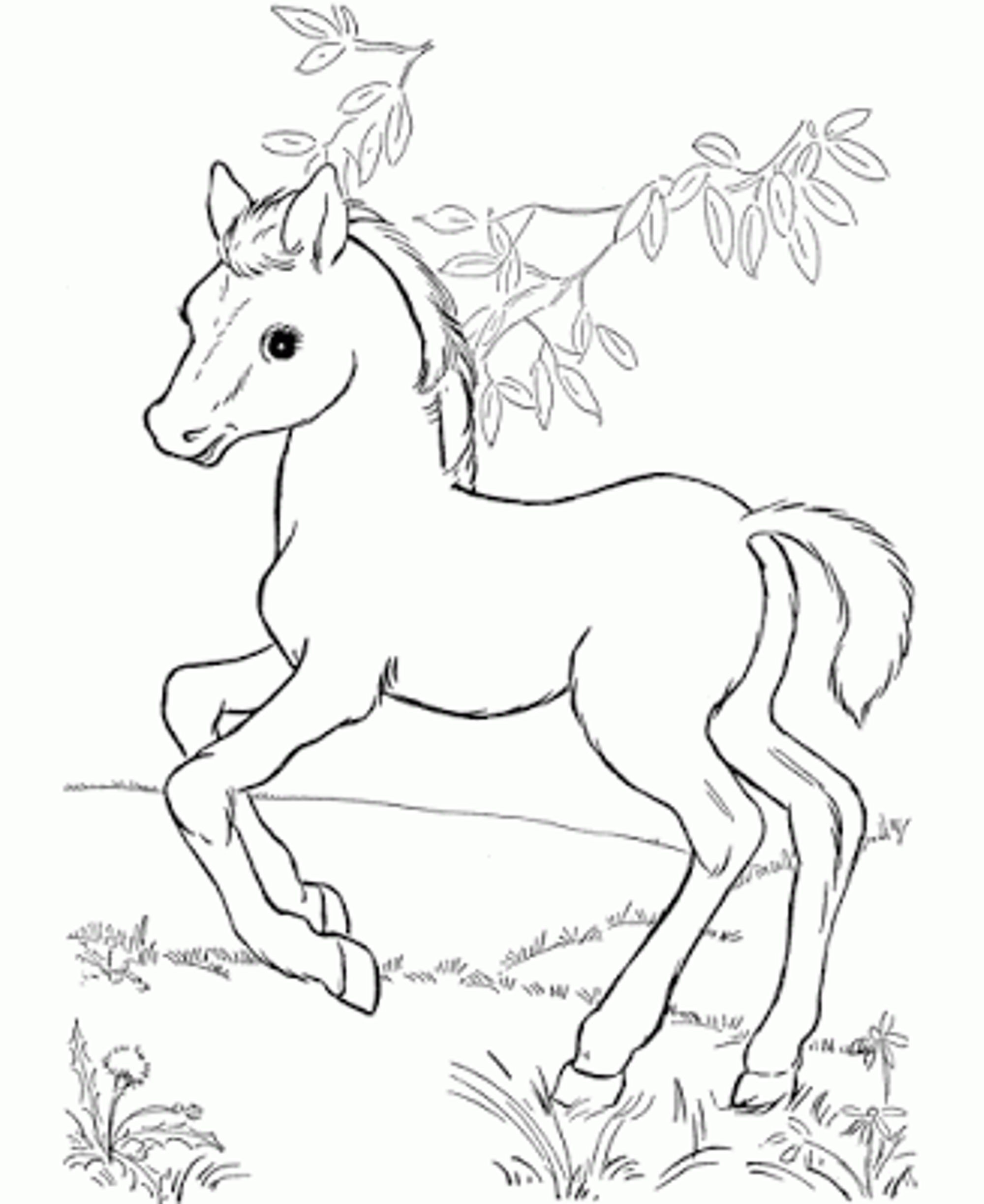 2000x2446 New Crayola Coloring Pages Horses