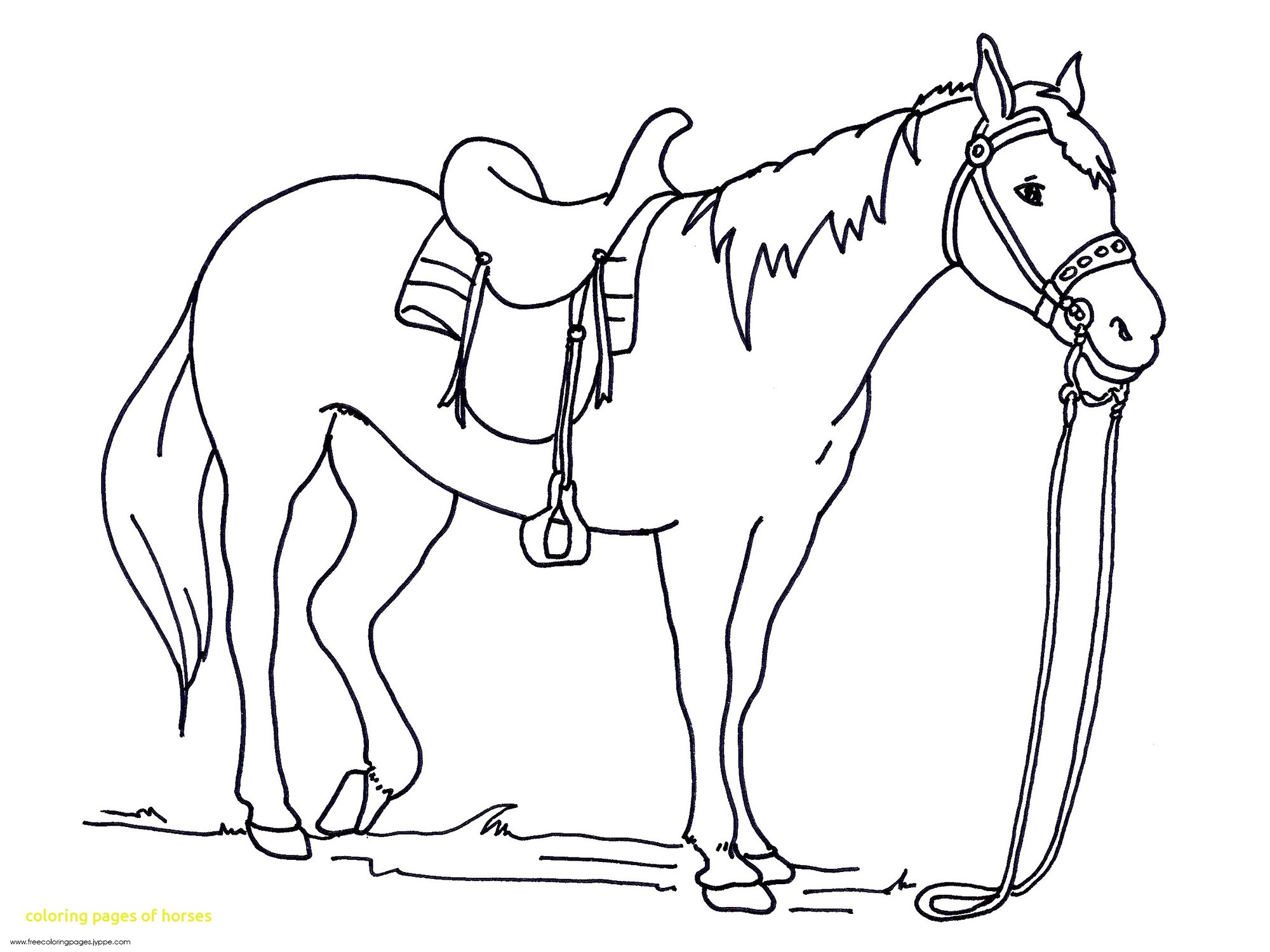 2000x1500 Printable Horse Coloring Pages Download Free Books