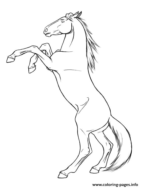 561x739 Rearing Horse Coloring Pages Printable