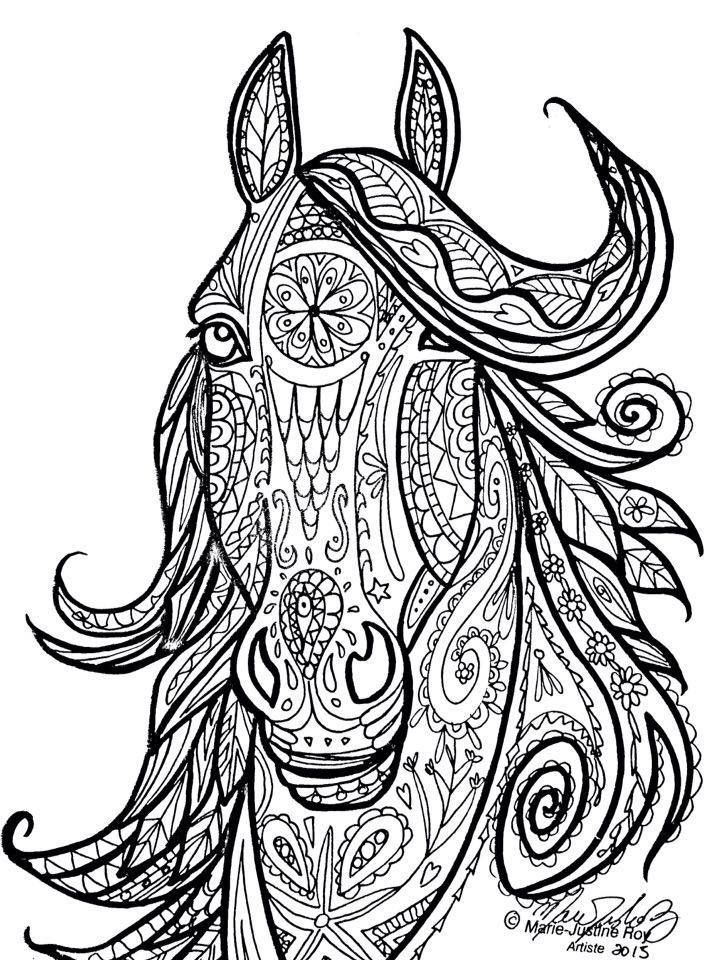 720x960 Horse Adult Coloring Pages
