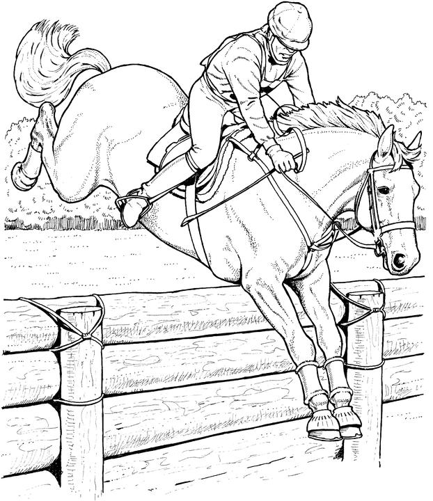 622x720 Realistic Horse Coloring Pages
