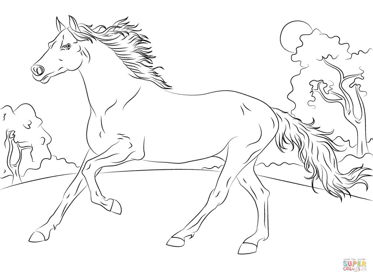 1228x916 Running Arabian Horse Coloring Page Horse Coloring Pages