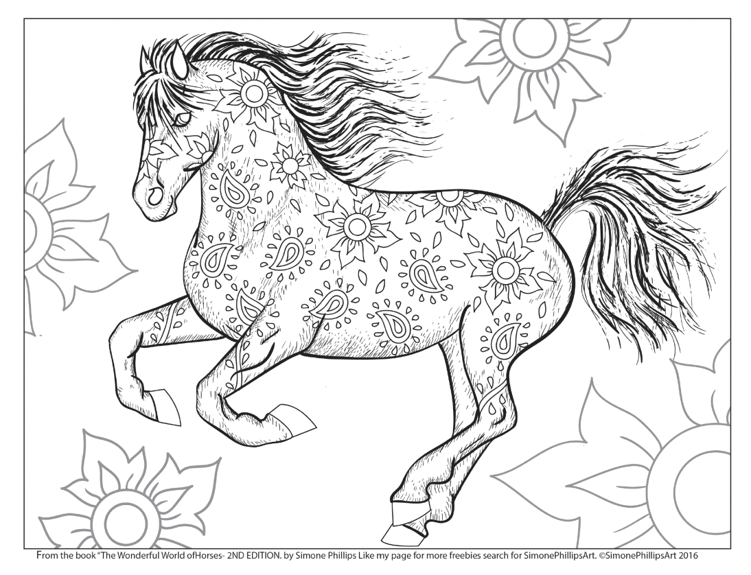 1094x838 The Wonderful World Of Horses Adult Coloring Colouring Book