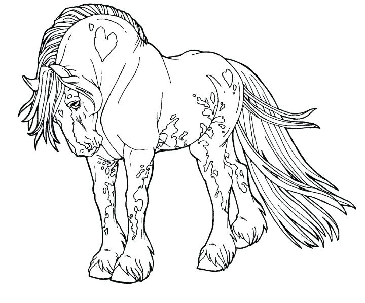 720x598 Horse Coloring Books