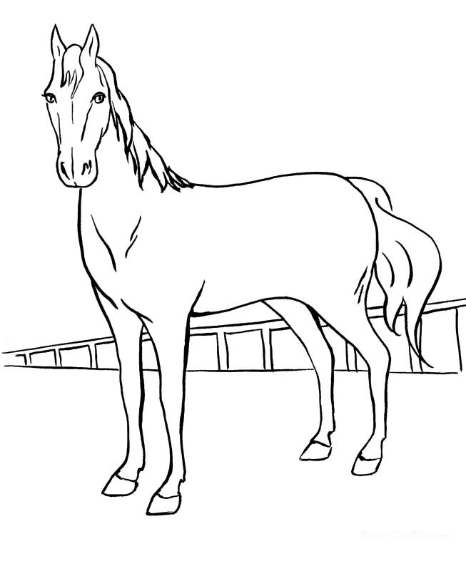 653x794 Girl On Horse Coloring Pages For Girls Images