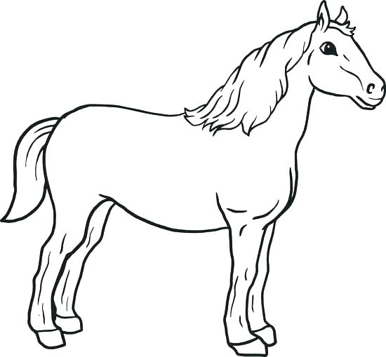 550x509 Horse Coloring Pages Printable Mustang Horse Coloring Pages Horse