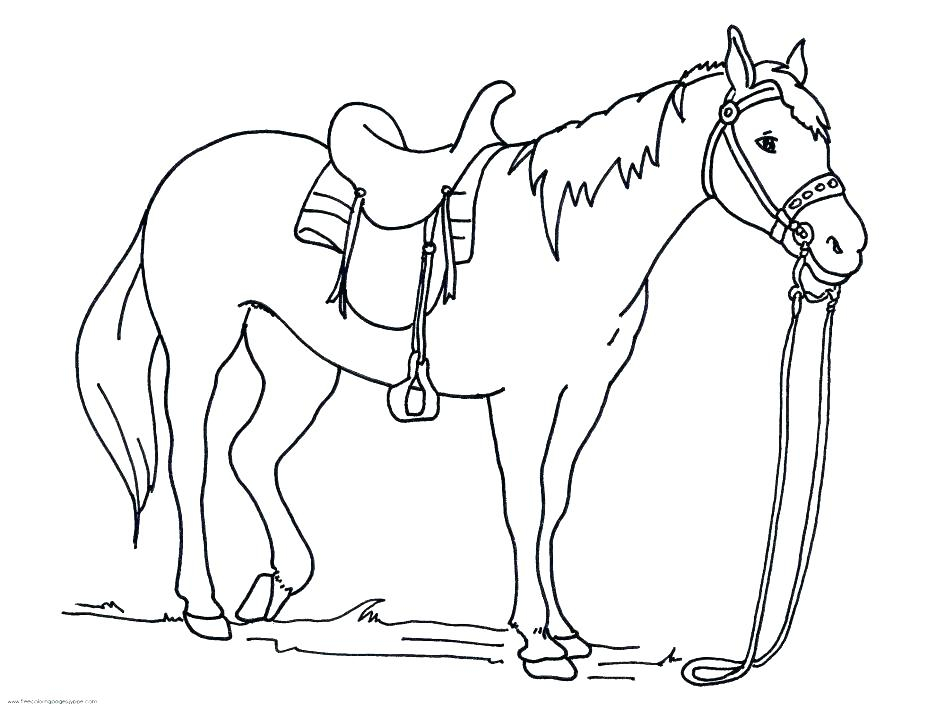 945x709 Horse Drawing Kids