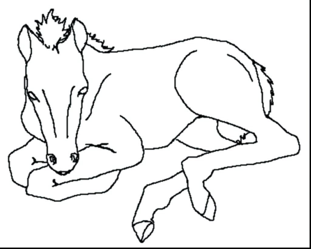1024x819 Coloring Pages Free Horse Coloring Pages Printable Race Free