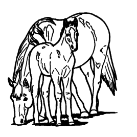 268x268 Coloring Pages Printable Of Horses Archives