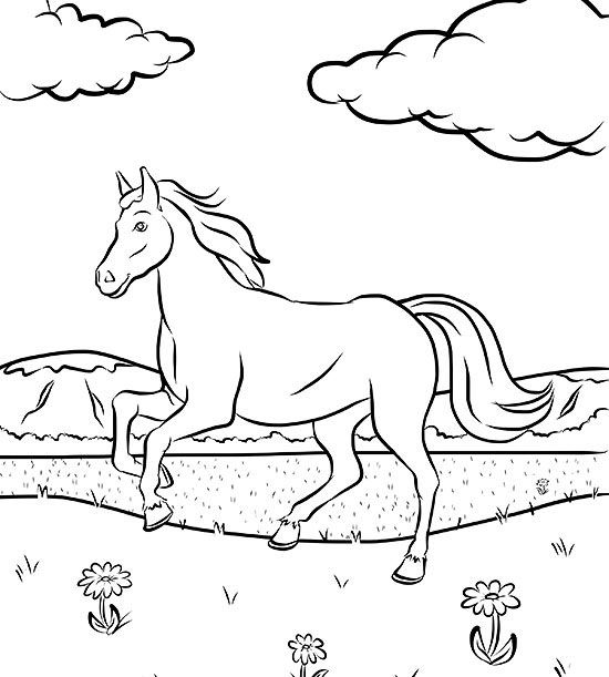 Horse Coloring Pages Games at GetDrawings.com   Free for ...