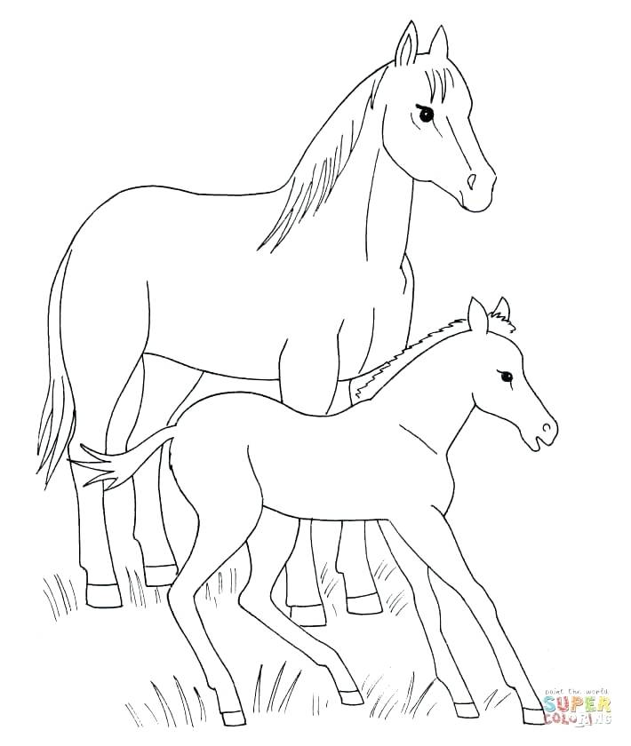 710x840 Luxury Coloring Pages Of Horses Printable For Horse And Foal