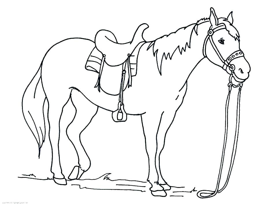 945x709 Spirit Stallion Coloring Pages Spirit Stallion