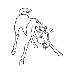 236x236 Spirit The Horse To Print Horse, Drawings