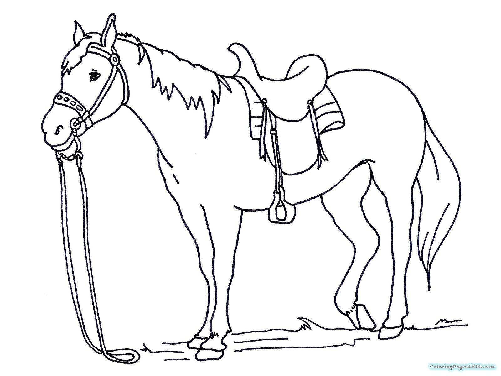 1600x1200 Horse Coloring Pages Spirit