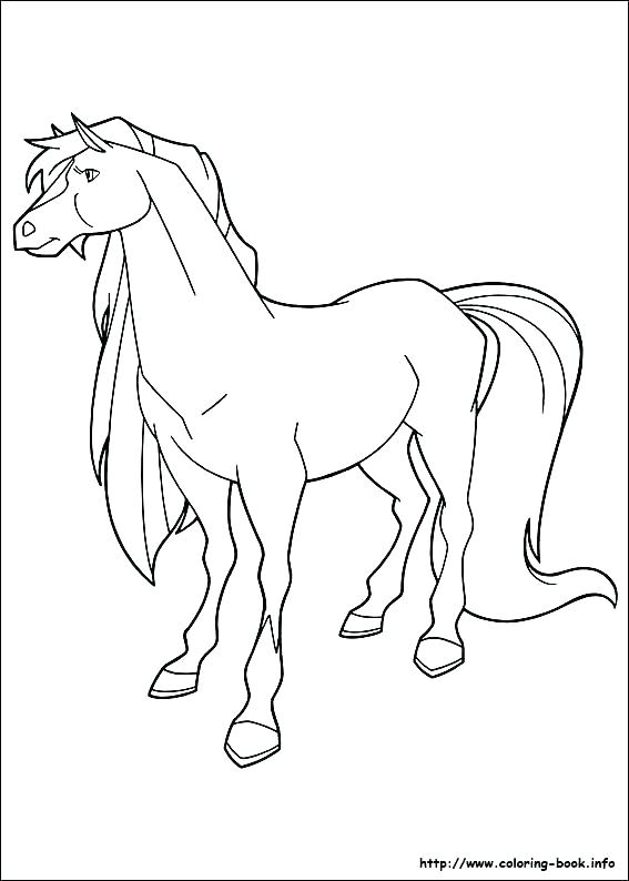 567x794 Arabian Horse Coloring Pages Horse Coloring Pages To Print