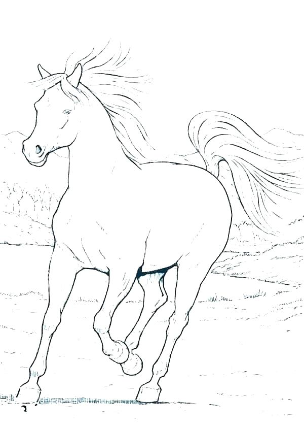 600x847 Printable Realistic Horse Coloring Pages Professional