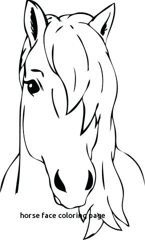 290x480 Horse Head Coloring Pages Horse Face Coloring Page With Horse Head