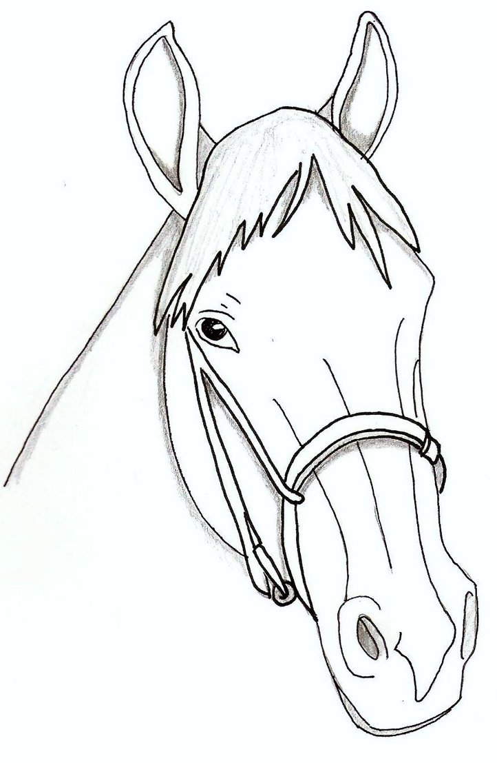 722x1107 Horse Face Coloring Page