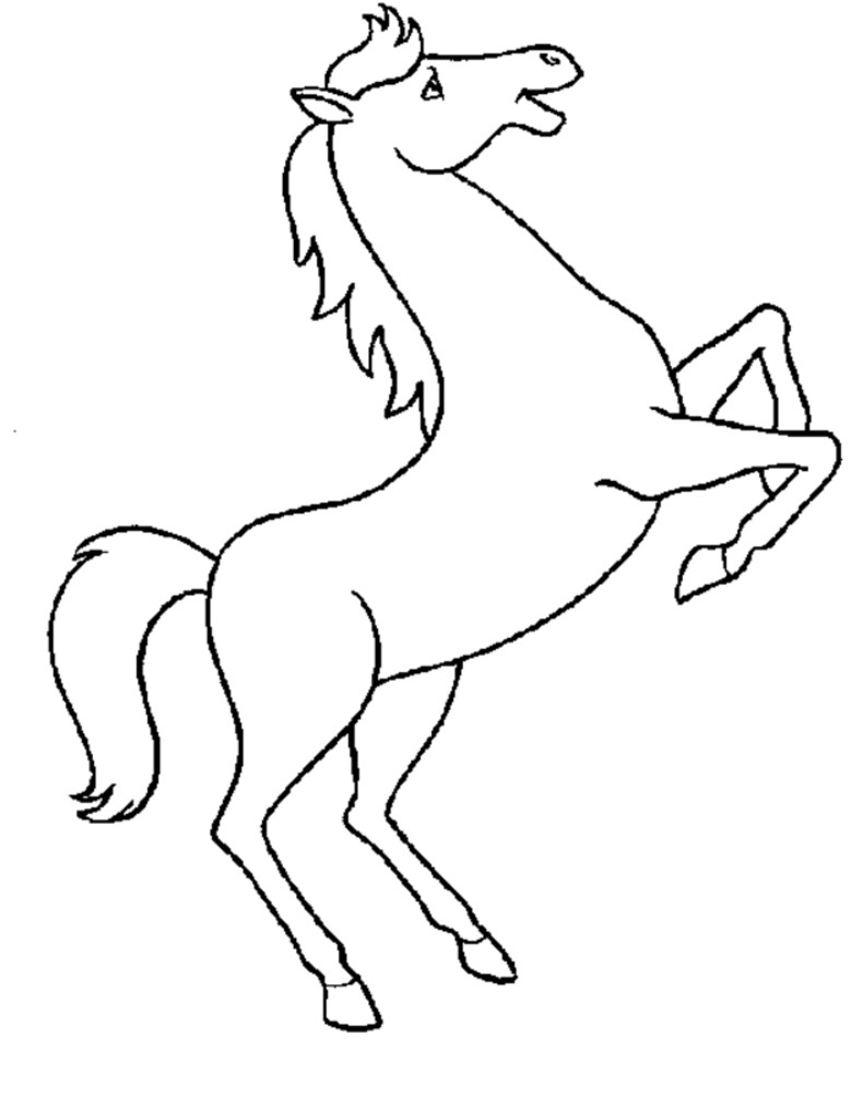 790x1015 Horse Head Coloring Page Clipart Best Of Cool Realistic Pages