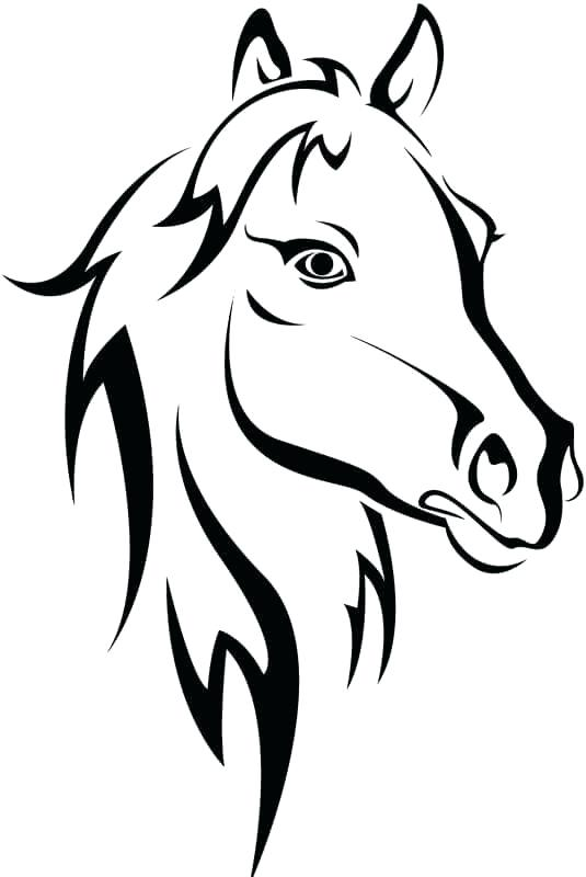 535x800 Horse Head Coloring Pages Best Images On Drawing Ideas Doodles