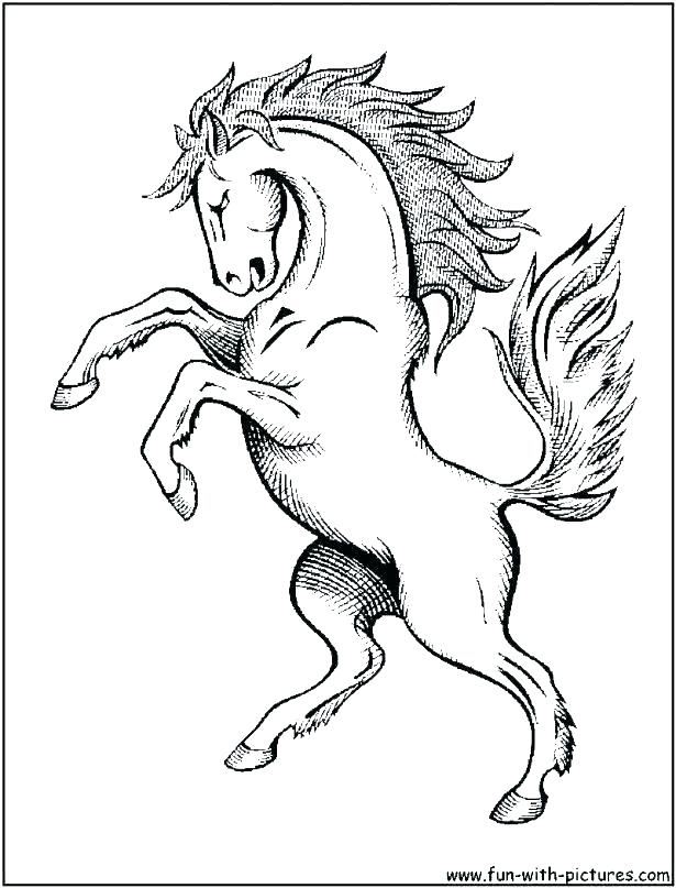 615x807 Printable Horse Head Coloring Pages Page Color Printab