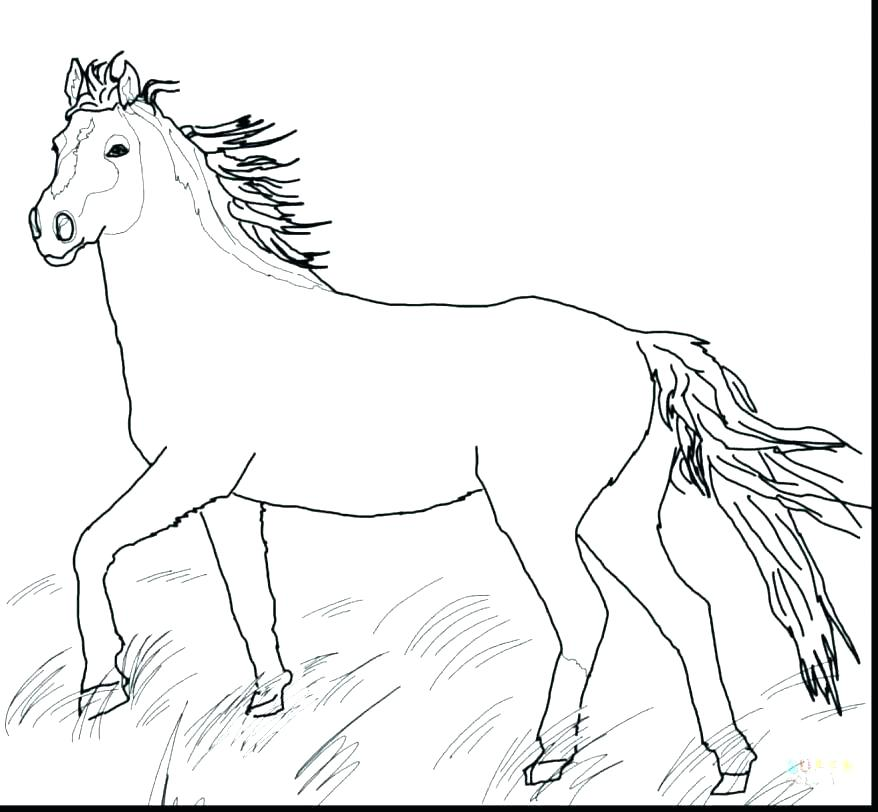 878x812 Printable Horse Pictures To Color