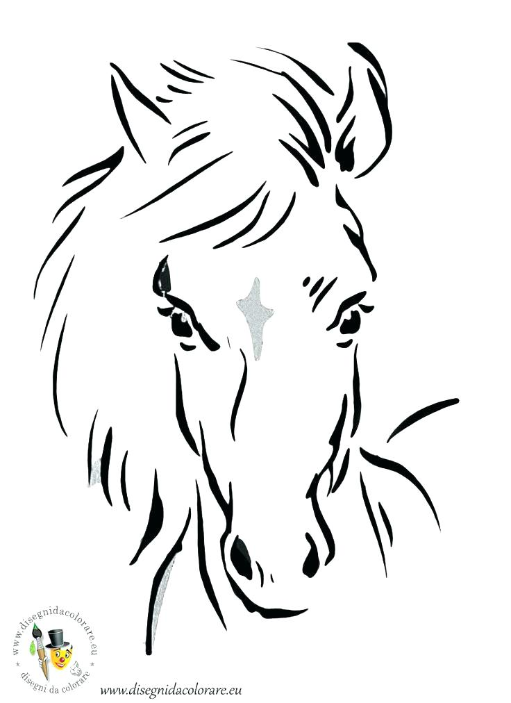 736x1012 Horse Head Coloring Page Horse Head Coloring Page This Is Coloring