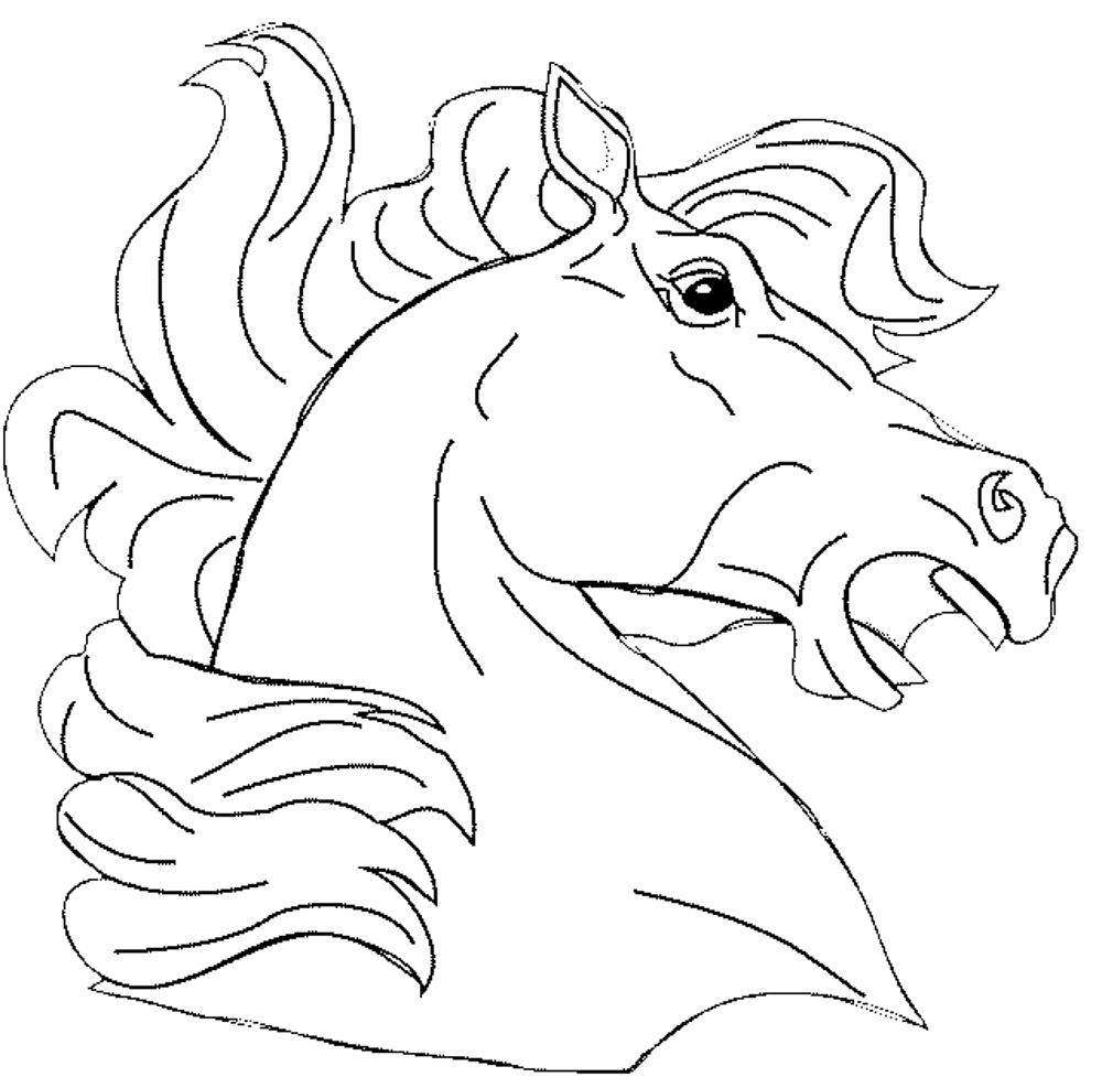 1000x977 Horse Head Coloring Pages To Print At Face Page Throughout