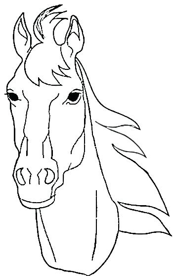 350x557 Horse Head Profile Coloring Page Horse Head Coloring Pages