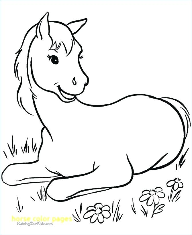 670x820 Jockey Silks Coloring Pages Horse Racing Color Pages Horse