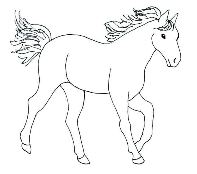 678x600 Coloring Pages Horse Printable Horse And Jockey Pictures Subiekt