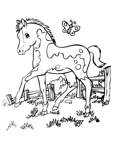463x600 Realistic Horse Coloring Pages Horse Jumping Coloring Pages