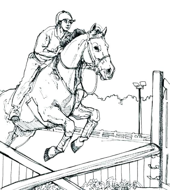564x631 Free Horse Jumping Coloring Pages