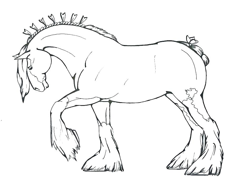 900x710 Coloring Pages Horses Printable Coloring Page Of Horse Simple