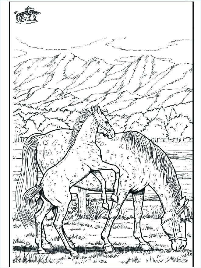 660x880 Race Horse Coloring Pages To Print Professional