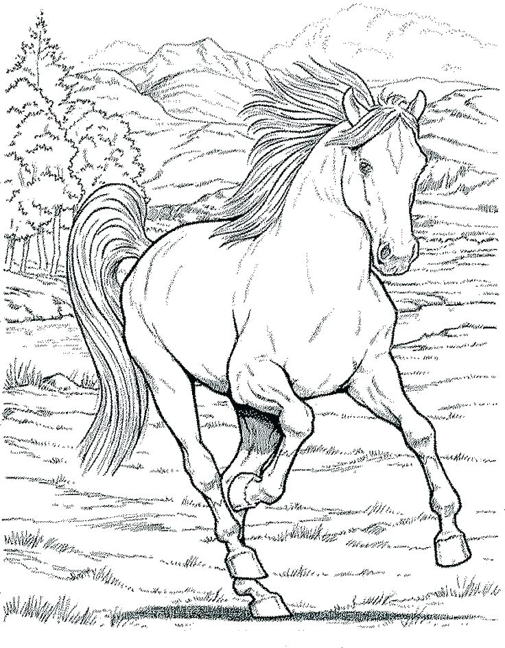 736x945 Coloring Pages Disney Pdf Horse Racing Free Horses For Barre