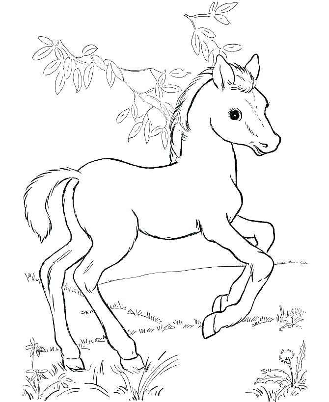 670x820 Running Coloring Pages Running Horse Coloring Pages Realistic
