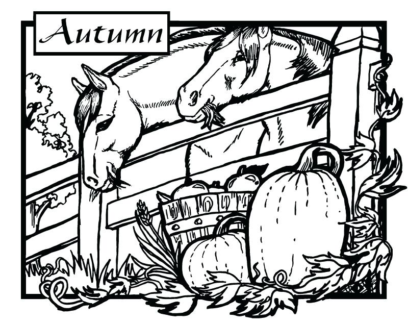 800x635 Good Horse Trailer Coloring Pages For Coloring Book Cover A True