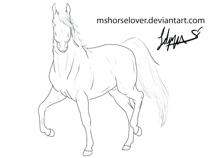 Horse Trailer Coloring Pages At Getdrawings Com