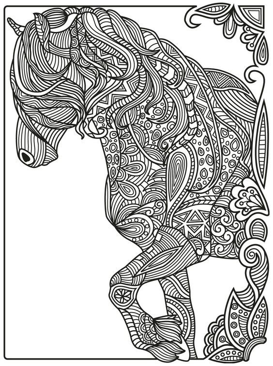 564x756 Horse Zentangle Colorish Coloring Book App For Adults Mandala