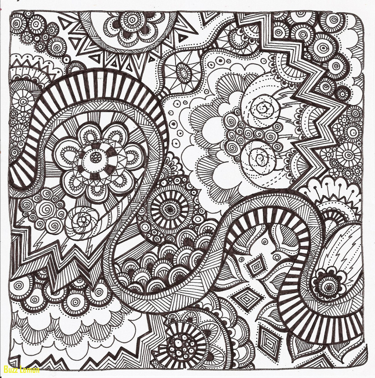 1588x1600 Luxury Coloring Page Zentangle Buzz Coloring