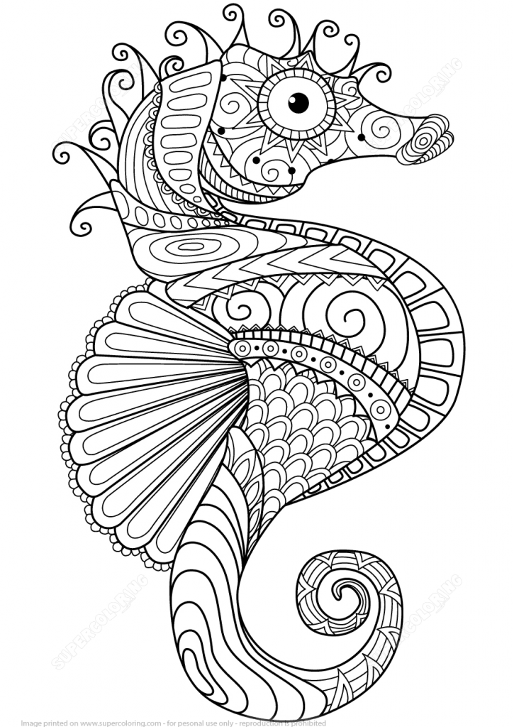 725x1024 Sea Horse Design Zentangle Coloring Page