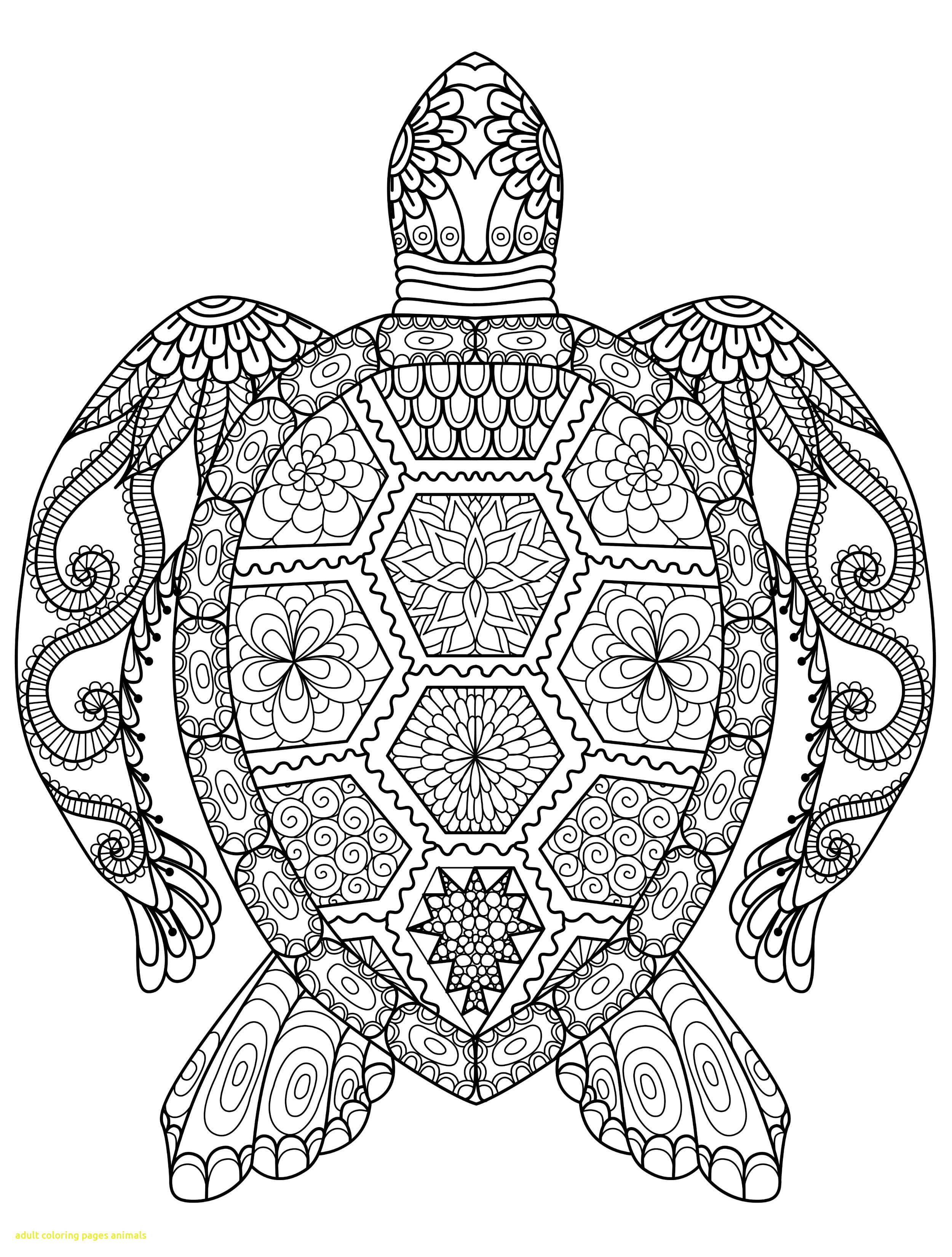 2500x3300 Animal Coloring Pages For Adults Adult Animals