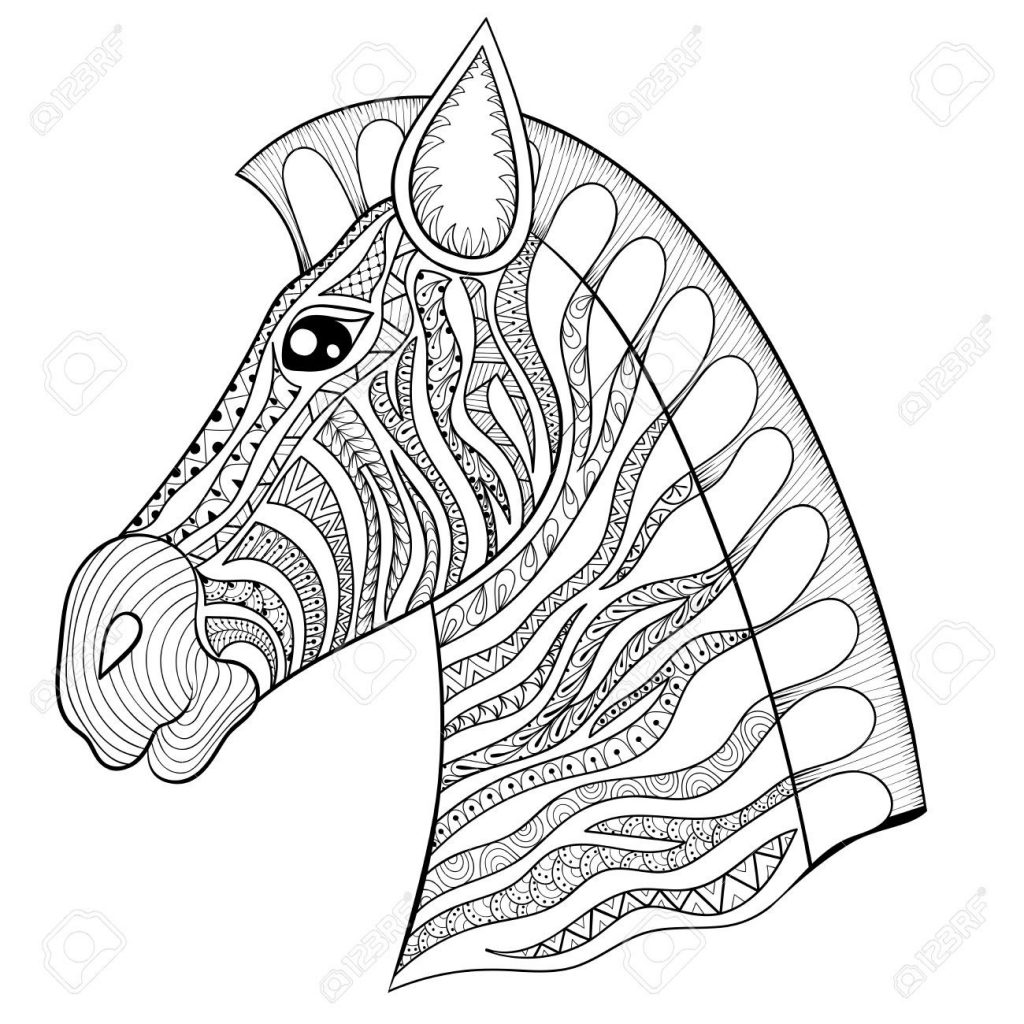 1024x1024 Zebra Head Coloring Pages Best Of Vector Zentangle Zebra Head