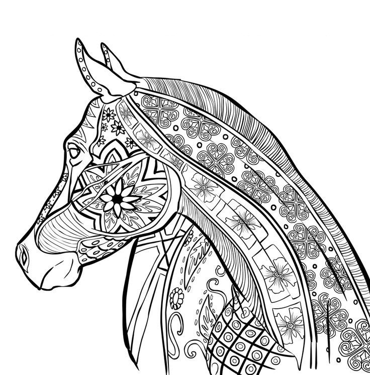 736x747 Zentangle Coloring Pages