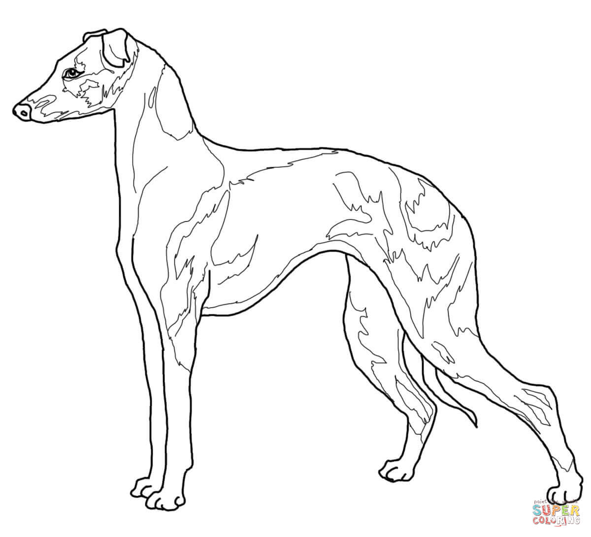 1200x1090 Fascinating Whippet Coloring Pages Animal Cart