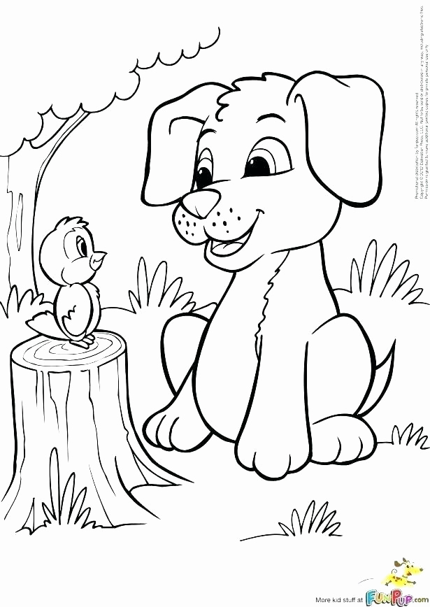615x868 Pitbull Coloring Page How To Draw Coloring Page Cute Pitbull Puppy