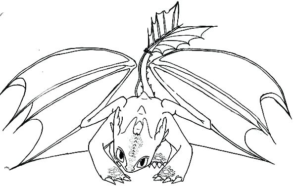 600x388 Night Fury Coloring Pages It S Here How To Train A Dragon Coloring