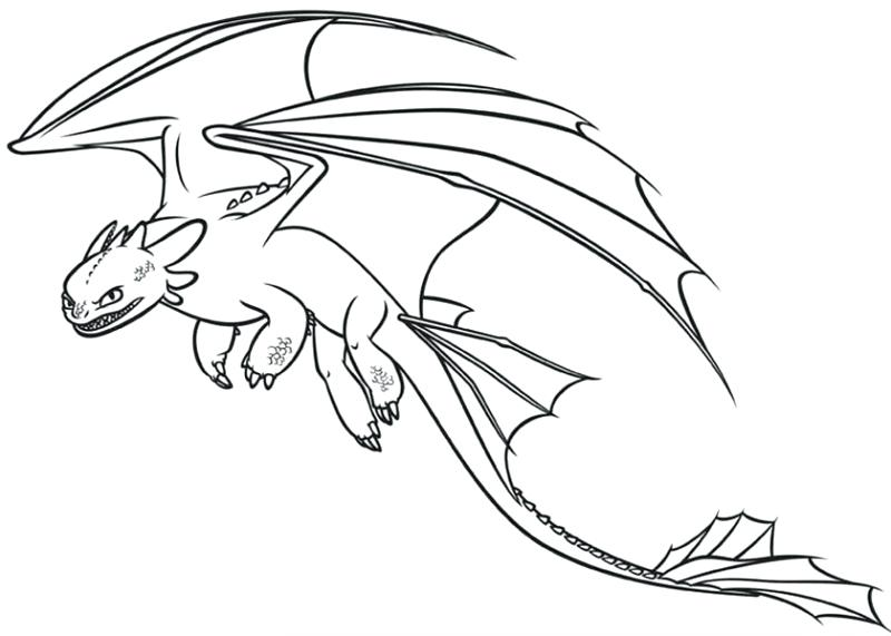 800x571 Night Fury Coloring Pages Night Fury Coloring Page How To Train