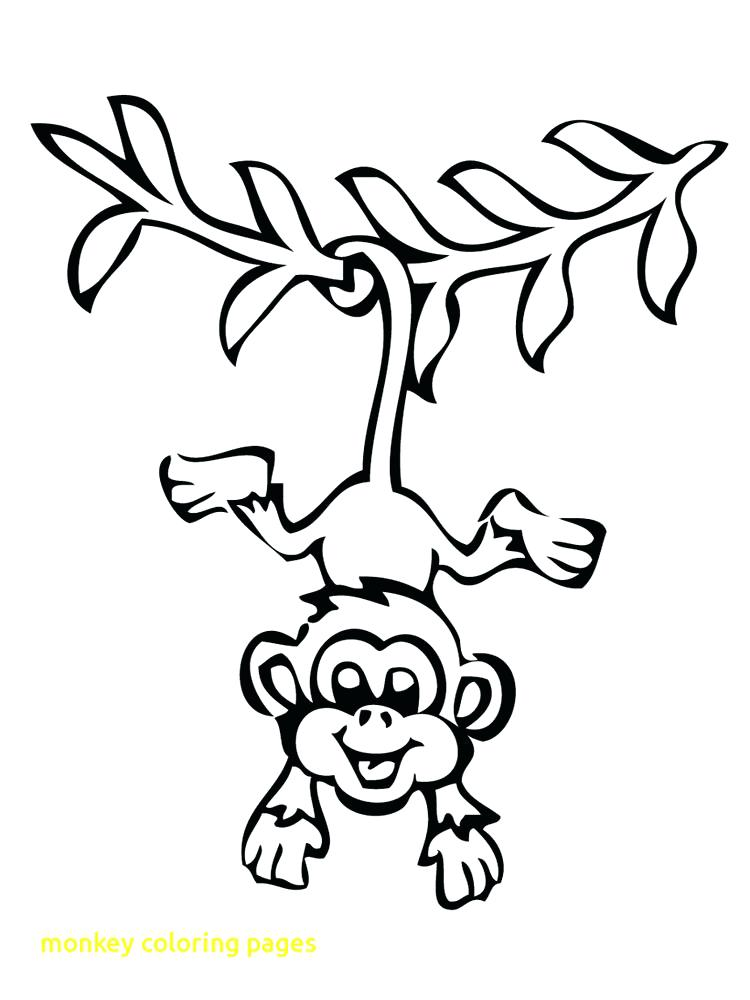 750x1000 Monkey Coloring Sheet M Is For Monkey Coloring Page Spider Monkey